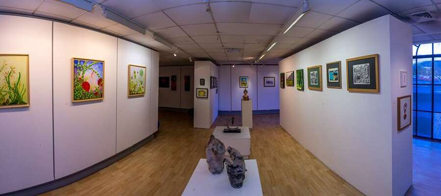 Rosemarie's paintings hanging in Cynon Valley Museum exhibition