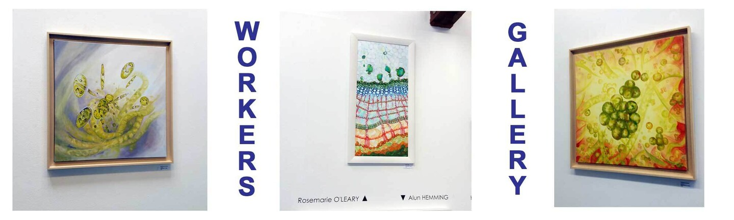 Rosemarie's paintings hanging in Workers Gallery Group Show Event