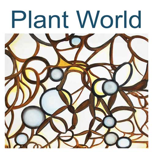 plant world art collection