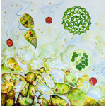 Painting of single cell algae forms in greens and yellow