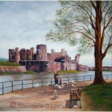 Feeding The Birds At Caerphilly Castle Ltd Edition Prints