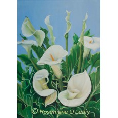 Calla Lilies Painting Signed Prints